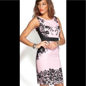 NY & Co Elegant Light Pink w/Black Flower Design